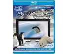 Antarctica Dreaming - Wildlife On Ice [Blu-ray]