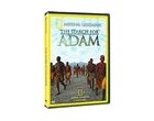 national geographic - la recherche d'adam